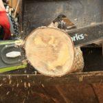 Greenworks 20312 cordless chainsaw