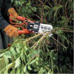 pruning lopper